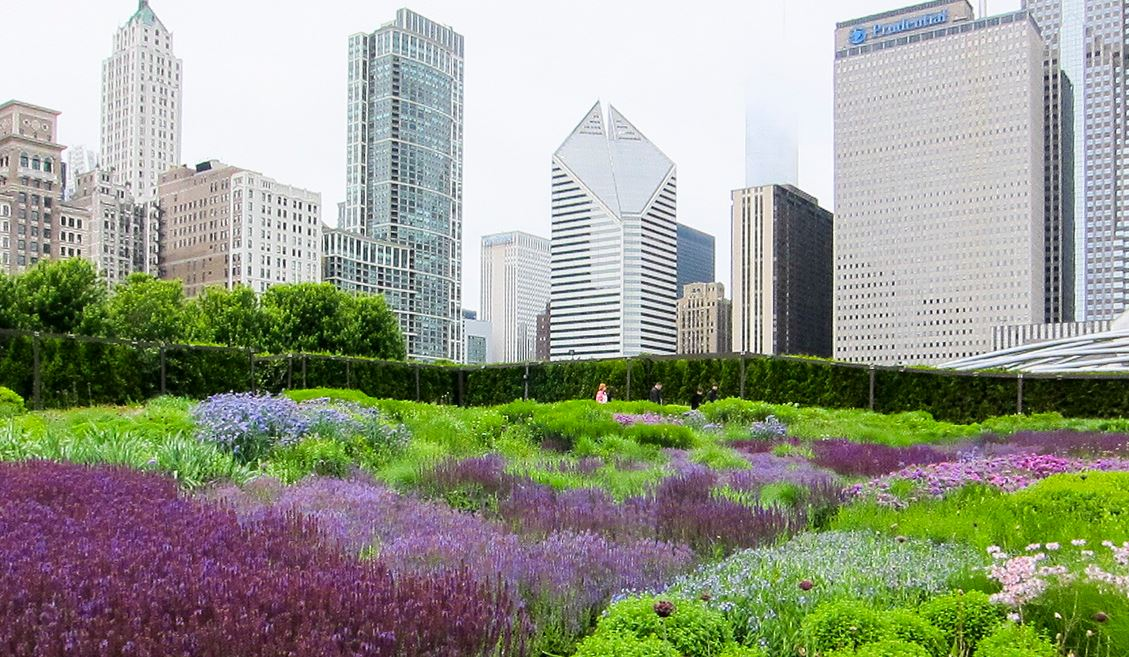 lurie gardens chicago